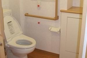 そんぽの家 倉敷(旧名称:コミュニティホーム アミーユ倉敷) トイレ(同タイプの他のそんぽの家の写真)