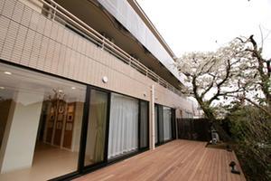 アリア哲学堂 1階のウッドデッキテラスです。春には大和桜が咲きます。